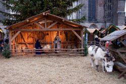 Christmas Bethlehem